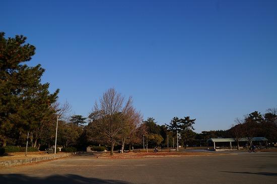 DSC05442.jpg