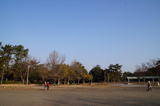 DSC06033.jpg