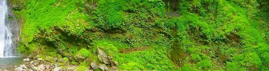 八反滝壁.jpg