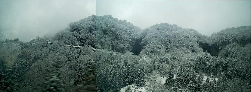 初冬の壁.jpg
