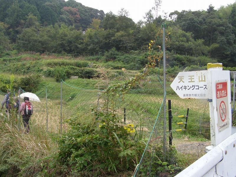 PA136259.jpg
